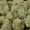 Buy blue dream online in Italy buy bloom vape in USA stiiizy pods for sale Italy buy humbolt farms in Atlanta order Stiiizy pods in europe