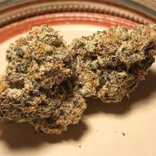 BUY PURPLE PUNCH STRAIN ONLINE EUROPE, PURPLE PUNCH FOR SALE EUROPE, BUY 1KG WEED EUROPE, CURE PEN FOR SALE UK, buy exotic weed in europe